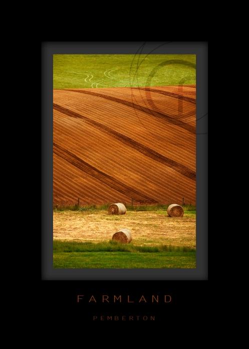 farmland-pembi